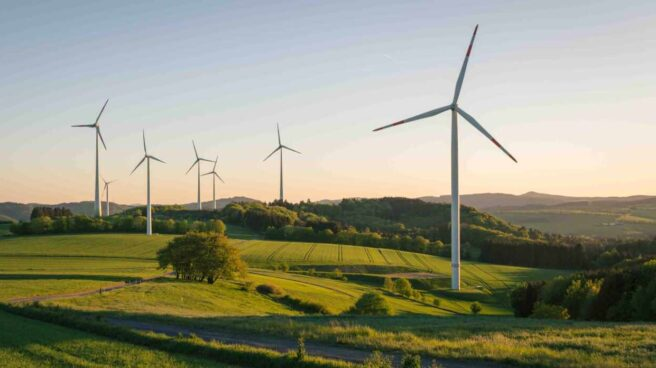 En su apuesta por una transición energética justa, Endesa quiere reconvertir las viejas centrales térmicas en centros punteros para el desarrollo de la producción industrial de hidrógeno verde