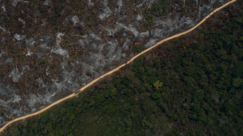 Vista aérea del área quemada después de un incendio en la selva amazónica en agosto de 2020.