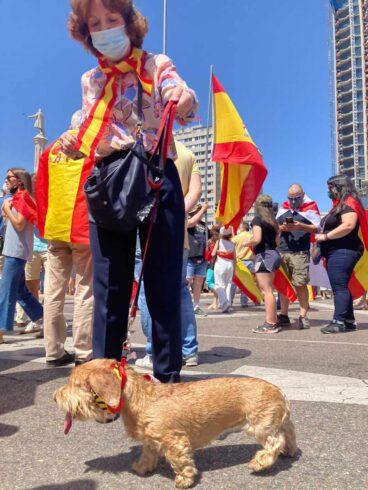 """Una manifestante con su perra """"Pepa"""" en los aledaños de Colón"""