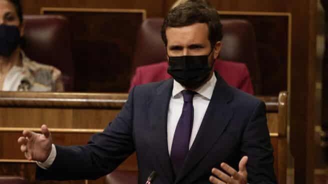 El líder del PP, Pablo Casado, interviene en una sesión de control al Gobierno.