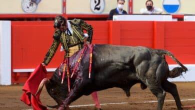 Los toros interesan a once millones de españoles, según un estudio del Ministerio de Cultura
