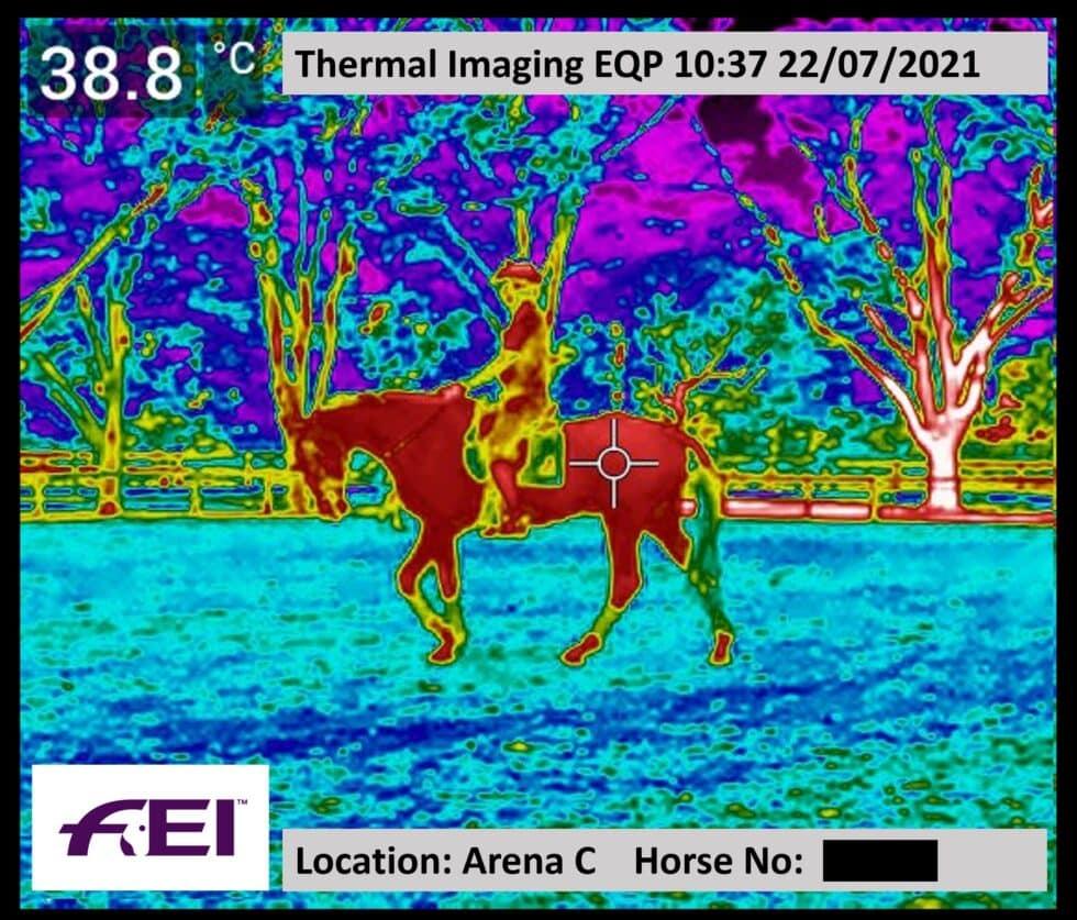 Ejemplo de la monitorización de la temperatura de los caballos con cámaras termográficas en los JJOO de Tokio.