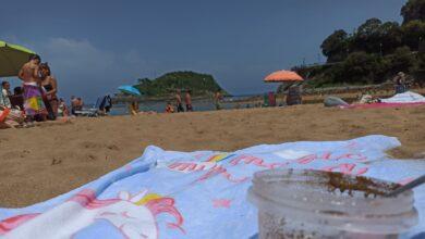 Puré de playa