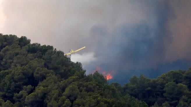 Incendio forestal en Santa Coloma de Queralt (Tarragona).