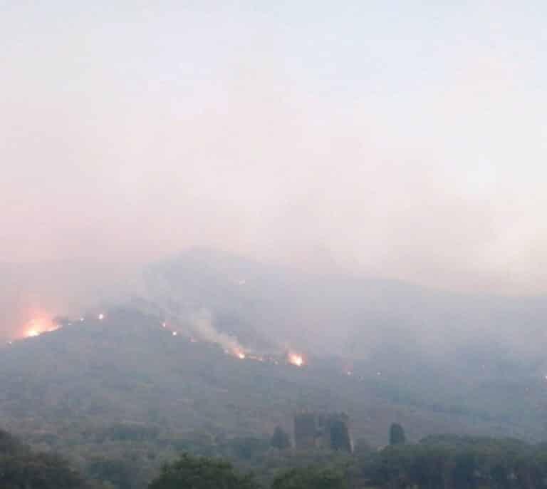 Los bomberos dan por estabilizado el incendio en Cap de Creus
