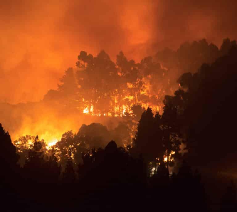Declarada la alerta por riesgo de incendios en El Hierro, La Gomera, La Palma, Tenerife y Gran Canaria