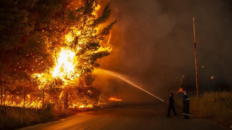 Un bombero intenta apagar un árbol ardiendo