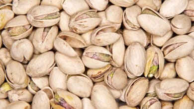 La comercial Pistacho del Sol investigada por la venta de pistachos ecológico falsos en España y Francia