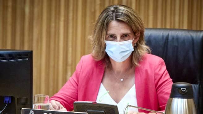 La ministra de Transición Ecológica y Reto Demográfico, Teresa Ribera, preside una Comisión de Transición Ecológica y Reto Demográfico