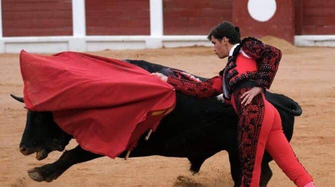 La alcaldesa de Gijón deja a la ciudad sin toros tras la polémica de 'Feminista' y 'Nigeriano'