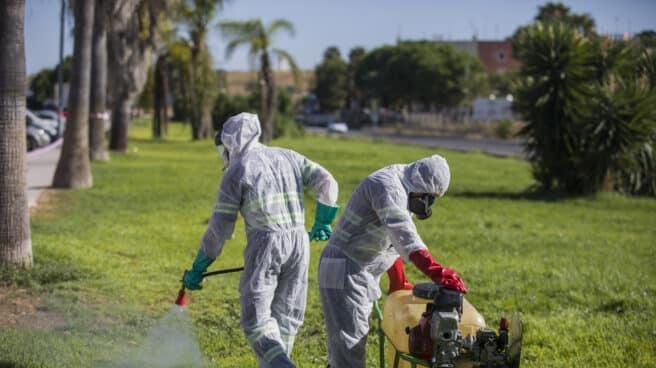 Un trabajador durante las labores de fumigación contra los mosquitos causantes del virus del Nilo en Coria del Río, (Sevilla)