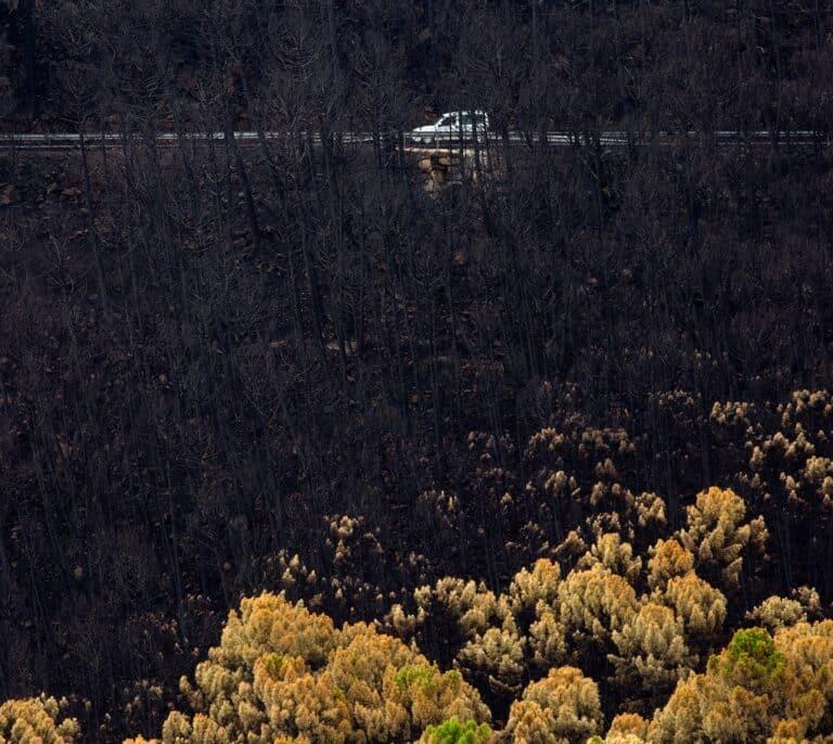 Bomberos siguen apagando puntos calientes en el incendio de Sierra Bermeja