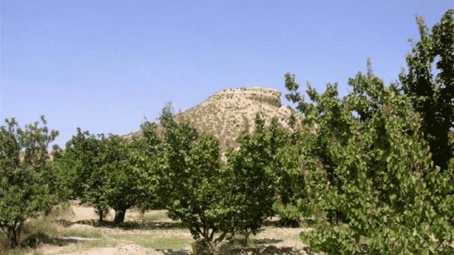 El yacimiento del Cabezo de la Cobertera, en Murcia, recién incluido en la Listas Roja de Patrimonio