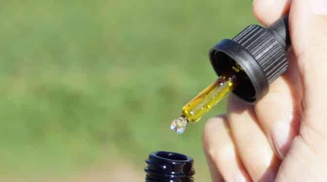 Regular el cannabis medicinal podría beneficiar a 200.000 pacientes en España