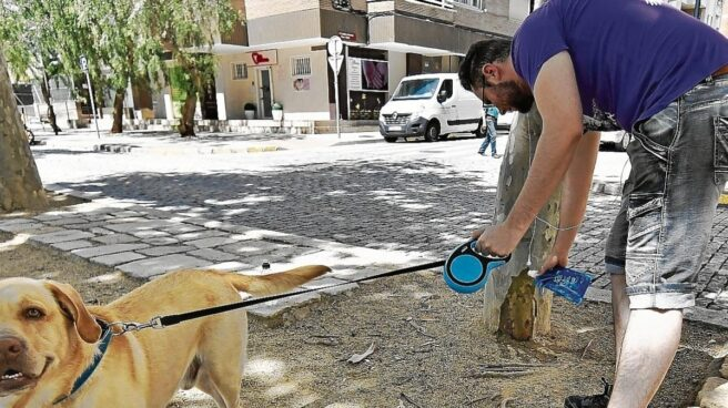 El dueño de un perro limpia el orín que ha hecho la mascota en un árbol