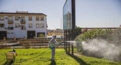 La Junta confirma un caso de Virus del Nilo en Sevilla