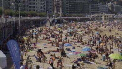 San Sebastián alerta de la aparición de un alga tóxica en sus playas