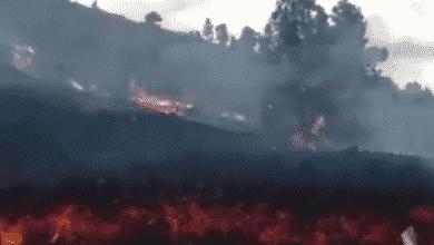 VÍDEOS | El volcán de La Palma desde su erupción hasta los ríos de lava