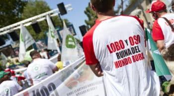 Cantabria, Asturias, Galicia y Castilla y León se unen para frenar en los tribunales la prohibición de caza del lobo