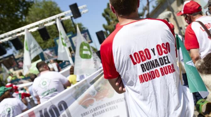 Cantabria, Asturias, Galicia y Castilla y León se unen para frenar la prohibición de caza del lobo