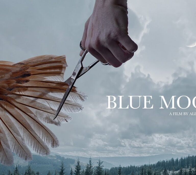 'Blue Moon', la ópera prima de la rumana Alina Grigore, gana la Concha de Oro