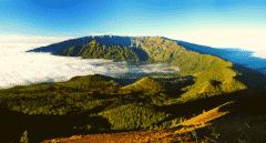 Cuántos habitantes tiene la isla de La Palma