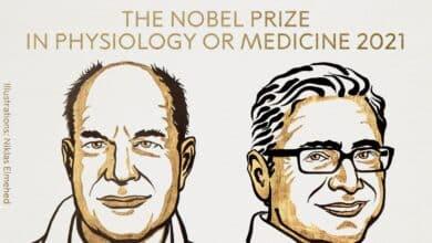 David Julius y Ardem Patapoutian, premios Nobel de Medicina