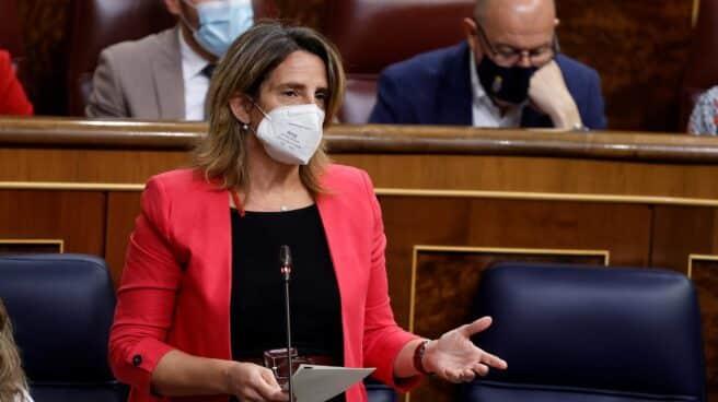 La ministra Teresa Ribera, en el Congreso de los Diputados.